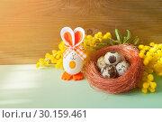 Купить «Easter background. Easter bunnies and Easter eggs in the box near the mimosa flowers, Easter concept», фото № 30159461, снято 27 февраля 2018 г. (c) Зезелина Марина / Фотобанк Лори