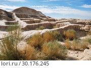 Купить «Walls of ancient fortress Toprak-Kala (Toprak Qala) in Kyzylkum desert, Karakalpakstan, Uzbekistan, Central Asia», фото № 30176245, снято 21 октября 2016 г. (c) Юлия Бабкина / Фотобанк Лори