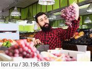 Купить «Positive man seller holding grapes in shop», фото № 30196189, снято 15 ноября 2016 г. (c) Яков Филимонов / Фотобанк Лори