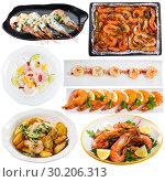 Купить «Collection of dishes of shrimps», фото № 30206313, снято 21 ноября 2019 г. (c) Яков Филимонов / Фотобанк Лори