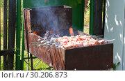 Купить «Grilled appetizing kebab cooking on metal skewers», видеоролик № 30206873, снято 18 июля 2019 г. (c) FotograFF / Фотобанк Лори