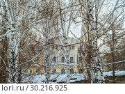 Mansion in a winter birch grove above the overpass. Стоковое фото, фотограф Евгений Харитонов / Фотобанк Лори