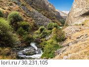 Купить «Garni basalt gorge along the Azat river in Armenia in Kotayk district, near Garni village», фото № 30231105, снято 22 сентября 2018 г. (c) Наталья Волкова / Фотобанк Лори