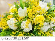 Купить «Spring bouquet for the International Women's Day on March 8 from the mimosa of white tulips and daffodils», фото № 30231501, снято 27 февраля 2019 г. (c) Светлана Евграфова / Фотобанк Лори