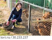 Купить «Girl farmer caring for poultry», фото № 30233237, снято 22 мая 2019 г. (c) Яков Филимонов / Фотобанк Лори