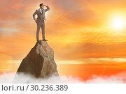 Купить «Businessman at the top of mountain», фото № 30236389, снято 20 марта 2019 г. (c) Elnur / Фотобанк Лори