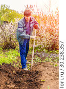 Купить «A young man in a country plot digs the ground to plant a tomato.», фото № 30238357, снято 4 мая 2016 г. (c) Акиньшин Владимир / Фотобанк Лори