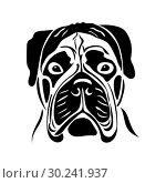 Купить «Portrait of a bullmastiff», иллюстрация № 30241937 (c) Сергей Лаврентьев / Фотобанк Лори