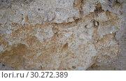 Купить «Background of old stone wall texture. Slow motion HD video», видеоролик № 30272389, снято 8 марта 2019 г. (c) Happy Letters / Фотобанк Лори