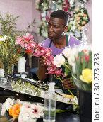 Купить «Florist preparing orchids for bouquet», фото № 30273733, снято 14 февраля 2019 г. (c) Яков Филимонов / Фотобанк Лори