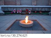 Купить «Вечный огонь славы. Великий Новгород», фото № 30274621, снято 9 марта 2019 г. (c) Сапрыгин Сергей / Фотобанк Лори