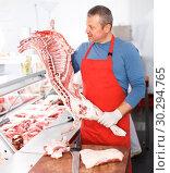 Купить «Adult man splitting and showing of pig carcass», фото № 30294765, снято 22 июня 2018 г. (c) Яков Филимонов / Фотобанк Лори