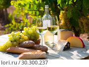 Купить «Tasty cheese, wine, grapes and bread on table in vineyards», фото № 30300237, снято 22 мая 2019 г. (c) Яков Филимонов / Фотобанк Лори