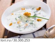 Купить «Bulgarian Tarator in white bowl», фото № 30300253, снято 20 марта 2019 г. (c) Яков Филимонов / Фотобанк Лори