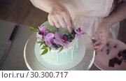 Купить «Wedding, festive, birthday biscuit cake decorated with pink orchid and blueberry», видеоролик № 30300717, снято 2 февраля 2019 г. (c) Ирина Мойсеева / Фотобанк Лори