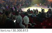 Купить «Мама и дочь со сладкой ватой в руках сидят на трибунах в цирке во время антракта», видеоролик № 30300813, снято 12 марта 2019 г. (c) Кекяляйнен Андрей / Фотобанк Лори