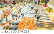 Купить «Russia Samara March 2019: a large selection of fresh fish lying in the ice on the counter of the supermarket. Text in Russian: salmon, steak, piece, carp, Sylvia, pollock, cod, Atlantic, smelt, herring, trout, sea bass, catfish, Burbot, mackerel, bream, pike, Amur, crucian carp», фото № 30314281, снято 1 марта 2019 г. (c) Акиньшин Владимир / Фотобанк Лори