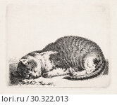 Купить «Sleeping Cat, after an engraving by Dutch artist Cornelis Saftleven c. 1607-1681. Sleeping Cat is part of a series Saftleven created on farm animals.», фото № 30322013, снято 11 сентября 2018 г. (c) age Fotostock / Фотобанк Лори