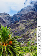 Купить «Fabulous Masca mountain gorge the most visited tourist attraction on Tenerife», фото № 30322901, снято 13 сентября 2015 г. (c) Ирина Мойсеева / Фотобанк Лори