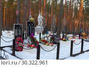Купить «Памятники на братском захоронениии советских воинов у среднего озера Толони, погибших в 1941-1944 годах, защищая город Лугу», эксклюзивное фото № 30322961, снято 10 декабря 2016 г. (c) Александр Щепин / Фотобанк Лори
