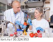 Купить «Biochemists checking fruits and vegetables», фото № 30324953, снято 24 января 2019 г. (c) Яков Филимонов / Фотобанк Лори