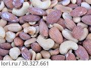 Купить «Roasted almond and cashew kernels coated», фото № 30327661, снято 9 марта 2019 г. (c) Владимир Белобаба / Фотобанк Лори