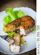 Купить «piece of fried pike fish in a plate on a wooden», фото № 30356189, снято 10 января 2019 г. (c) Peredniankina / Фотобанк Лори