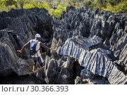 Купить «Tsingy de Bemaraha National Park. Madagascar, Africa.», фото № 30366393, снято 24 июня 2019 г. (c) age Fotostock / Фотобанк Лори