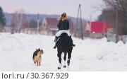 Купить «A woman riding a horse in a village with a dog running near by them», видеоролик № 30367929, снято 23 июля 2019 г. (c) Константин Шишкин / Фотобанк Лори