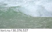 Купить «Turquoise rolling wave, slow motion», видеоролик № 30376537, снято 17 марта 2019 г. (c) Игорь Жоров / Фотобанк Лори