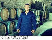 Купить «Male wine house technician working in storage», фото № 30387629, снято 22 сентября 2016 г. (c) Яков Филимонов / Фотобанк Лори