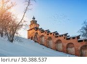 Часовая башня и птицы Clock tower of the Nizhny Novgorod Kremlin and birds (2019 год). Стоковое фото, фотограф Baturina Yuliya / Фотобанк Лори