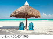 Купить «two sun chairs under palapa on tropical beach», фото № 30434965, снято 20 января 2010 г. (c) Syda Productions / Фотобанк Лори