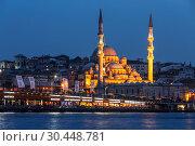 Купить «Stambul. Night view of the New Mosque Valide Sultan. Turkey», фото № 30448781, снято 16 мая 2015 г. (c) Наталья Волкова / Фотобанк Лори