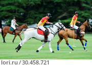 Prince sWilliam and Harry compete in the Jerudong Park Trophy at ... (2017 год). Редакционное фото, фотограф Jonathan Hordle / WENN.com / age Fotostock / Фотобанк Лори