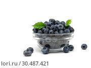 Купить «Blueberry berries isolated on white background», фото № 30487421, снято 23 февраля 2016 г. (c) Ласточкин Евгений / Фотобанк Лори