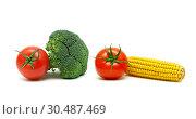 Купить «Vegetables isolated on a white background», фото № 30487469, снято 19 мая 2014 г. (c) Ласточкин Евгений / Фотобанк Лори