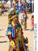 Купить «Male Native America warriors in ceremonial costumes at the Wa:k Pow Wow on the Tohono O'odham reservation in Arizona.», фото № 30512445, снято 16 марта 2019 г. (c) age Fotostock / Фотобанк Лори