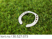 Купить «horseshoe on artificial grass», фото № 30527073, снято 15 марта 2018 г. (c) Syda Productions / Фотобанк Лори