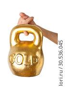 Купить «A hand holding heavy weight of gold», фото № 30536045, снято 13 января 2011 г. (c) Tryapitsyn Sergiy / Фотобанк Лори