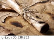 Купить «Rolled message on old paper», фото № 30538853, снято 7 июня 2012 г. (c) Tryapitsyn Sergiy / Фотобанк Лори