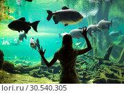 Купить «Woman at the oceanarium», фото № 30540305, снято 7 июля 2013 г. (c) Tryapitsyn Sergiy / Фотобанк Лори