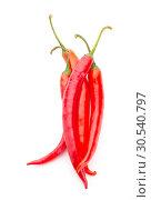 Red pepper. Стоковое фото, фотограф Tryapitsyn Sergiy / Фотобанк Лори
