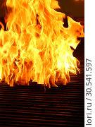 Пламя на решетке гриль. Стоковое фото, фотограф Марина Володько / Фотобанк Лори