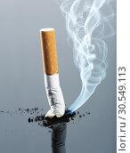 Купить «Cigarette butt with smoke», фото № 30549113, снято 6 сентября 2014 г. (c) Tryapitsyn Sergiy / Фотобанк Лори