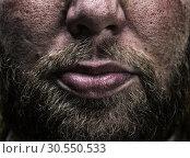 Male beard. Стоковое фото, фотограф Tryapitsyn Sergiy / Фотобанк Лори