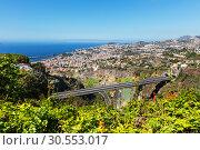 Town of Madeira (2015 год). Стоковое фото, фотограф Tryapitsyn Sergiy / Фотобанк Лори