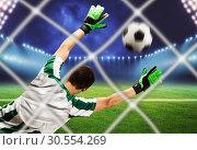Goalkeeper on the field. Стоковое фото, фотограф Tryapitsyn Sergiy / Фотобанк Лори
