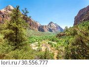 Купить «Virgin nature paniramic view of Zion National Park», фото № 30556777, снято 23 июня 2016 г. (c) Tryapitsyn Sergiy / Фотобанк Лори