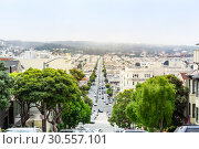 Купить «Road with trees and buildings at San Francisco», фото № 30557101, снято 5 июля 2016 г. (c) Tryapitsyn Sergiy / Фотобанк Лори